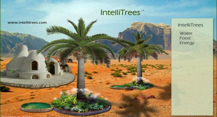 Intelli-Tree-in-Desert